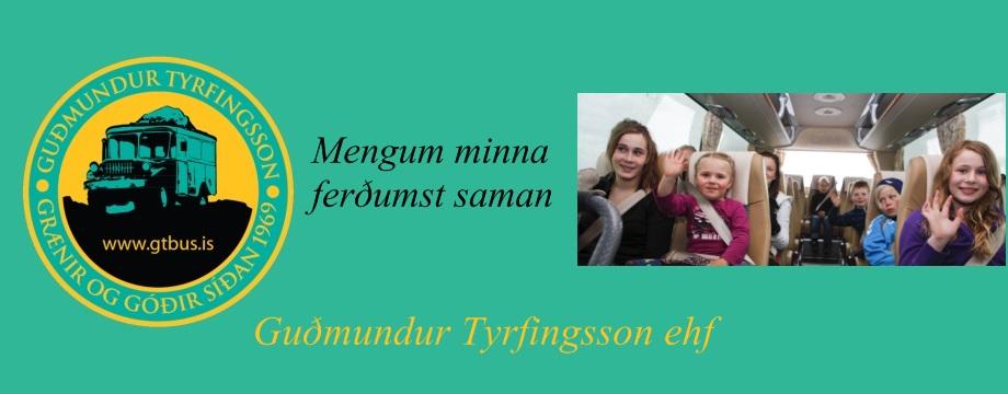 Mynd af Guðmundur Tyrfingsson ehf